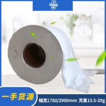 秦皇岛云芳(原丰满纸业)白色生活用纸原纸/大轴纸(2900mm)